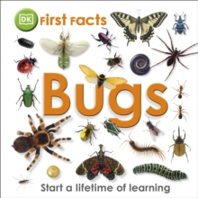 First Facts Bugs, Hardback Book