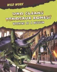 Who Cleans Dinosaur Bones? : Working at a Museum, Paperback Book