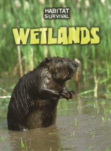 Wetlands, Paperback / softback Book