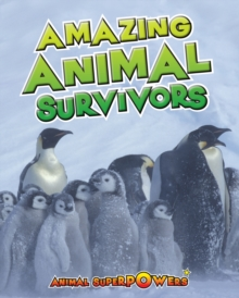 Amazing Animal Survivors, Paperback Book
