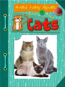 Cats, Paperback Book