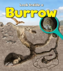 Burrow, Paperback Book