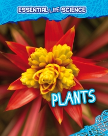 Plants, Paperback / softback Book