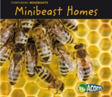 Minibeast Homes, Paperback Book