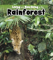 Living and Non-living in the Rainforest, Paperback Book