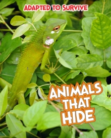 Adapted to Survive: Animals that Hide, Paperback Book