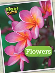 Plant Parts Pack A of 5, Hardback Book