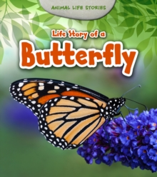 Life Story of a Butterfly, Paperback Book