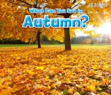 What Can You See in Autumn?, Paperback Book