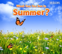 What Can You See in Summer?, Paperback Book