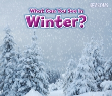 What Can You See In Winter?, Paperback / softback Book
