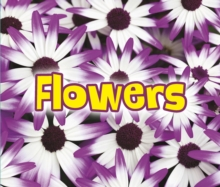 All About Flowers, Hardback Book