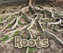 All About Roots, Paperback Book