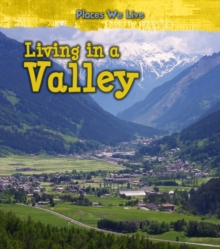 Living in a Valley, Hardback Book