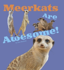 Meerkats are Awesome!, Hardback Book