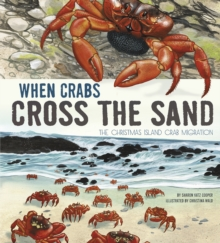 When Crabs Cross the Sand : The Christmas Island Crab Migration, Paperback Book