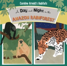A Day and Night in the Amazon Rainforest, Hardback Book