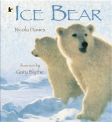 Ice Bear, Paperback / softback Book