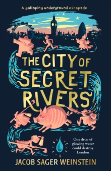 The City of Secret Rivers, Hardback Book
