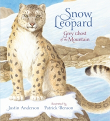 Snow Leopard: Grey Ghost of the Mountain, Hardback Book