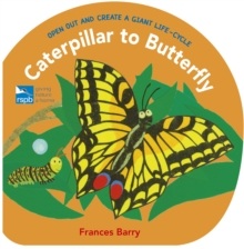 Caterpillar to Butterfly : Open Out and Create a Giant Life-Cycle, Hardback Book