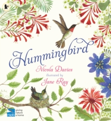 Hummingbird, Paperback / softback Book