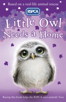 Little Owl Needs A Home, Paperback Book