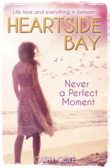 Never A Perfect Moment, Paperback Book