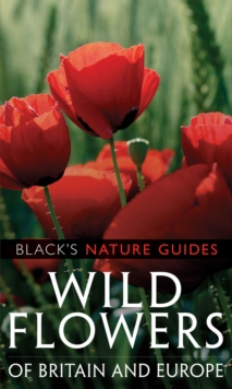 Wild Flowers of Britain and Europe, Paperback Book