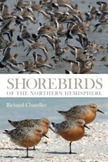 Shorebirds of the Northern Hemisphere, Paperback Book