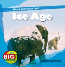 Ice Age, Paperback Book