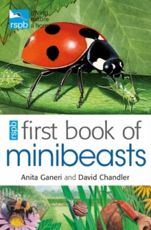 RSPB First Book of Minibeasts, Paperback Book