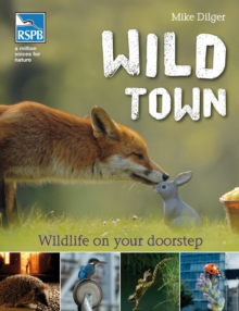 Wild Town, Paperback Book