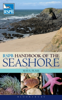 RSPB Handbook of the Seashore, Paperback Book