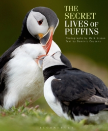 The Secret Lives of Puffins, Hardback Book