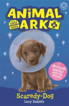 Animal Ark, New 2: Scaredy-Dog : Special 2, Paperback / softback Book