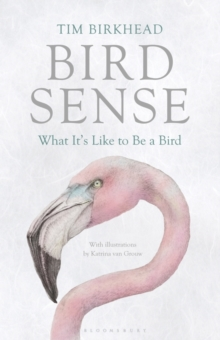 Bird Sense : What it's Like to be a Bird, Hardback Book