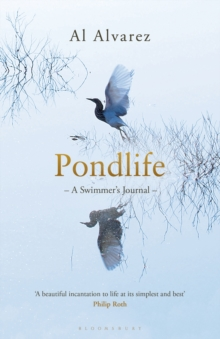 Pondlife : A Swimmer's Journal, Paperback Book