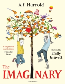 The Imaginary, Paperback Book