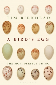 The Most Perfect Thing : Inside (and Outside) a Bird's Egg, Hardback Book