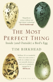The Most Perfect Thing : Inside (and Outside) a Bird's Egg, Paperback / softback Book