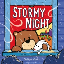 Stormy Night, Paperback Book