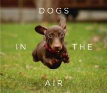 Dogs in the Air, Hardback Book