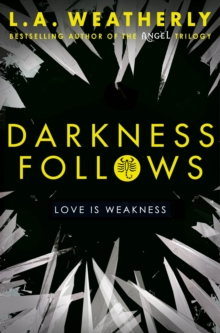 Darkness Follows, Paperback Book