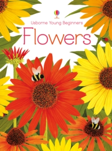Young Beginners Flowers, Hardback Book