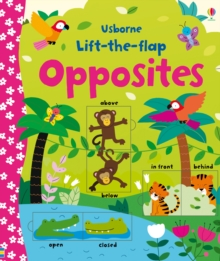 Lift-the-Flap Opposites, Board book Book