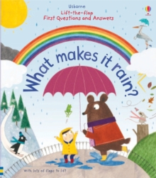 Lift-the-Flap First Questions & Answers : What Makes it Rain?, Board book Book