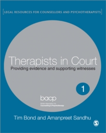 Therapists in Court : Providing Evidence and Supporting Witnesses, Paperback / softback Book
