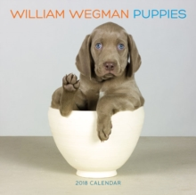 William Wegman Puppies 2018 Wall Calendar, Calendar Book