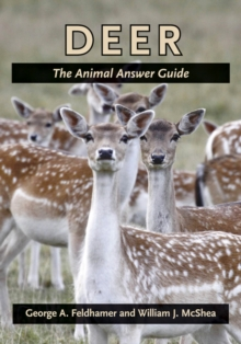 Deer : The Animal Answer Guide, Paperback / softback Book